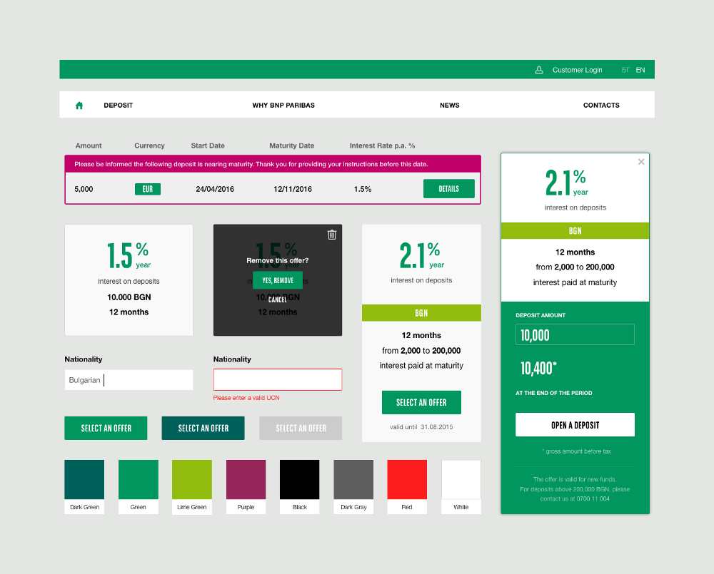 Style guide created by Despark for BNP Paribas