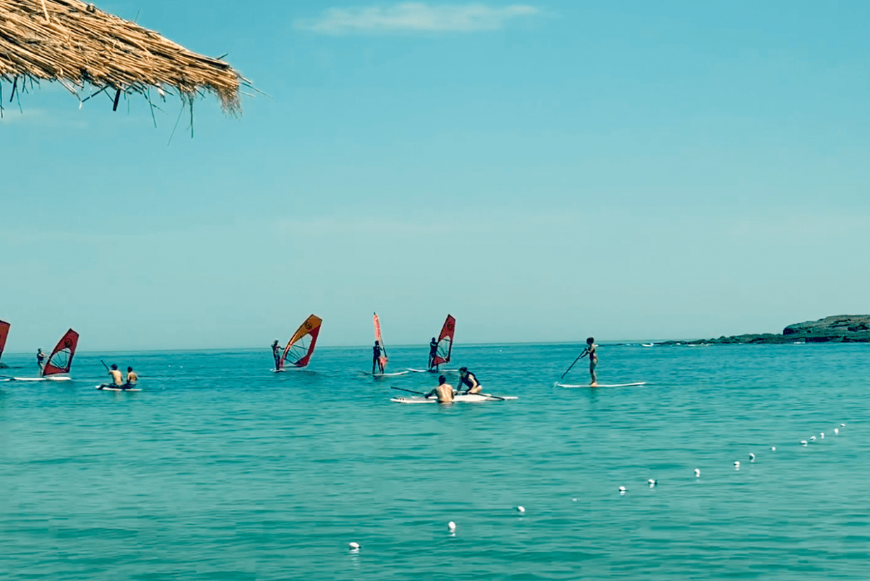 Despark—Windsurfing team building on the Black Sea